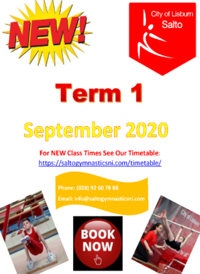 Term 1 2020 poster